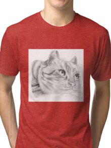 Pencil cat Tri-blend T-Shirt