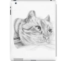 Pencil cat iPad Case/Skin