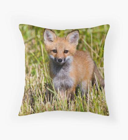 Fox Kit 2 Throw Pillow