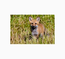 Fox Kit 2 Unisex T-Shirt