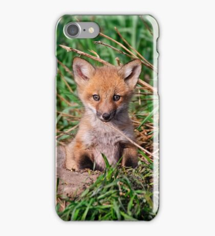 Who can resist this face - Ottawa, Ontario iPhone Case/Skin