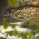 Tranquility - Chanhassen, MN by aleen