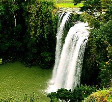 Country Falls by Pamela Rose Sime