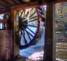 Wheel in Motion by ECH52