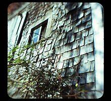 TTV- the old barn revisited by Jason Platt