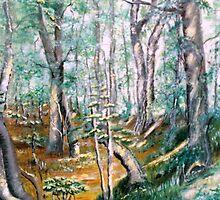 Woodland Walk 2 by Kathleen Ann Newton
