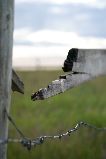 Broken Fence ,Stormy Skies by Lisa Knechtel