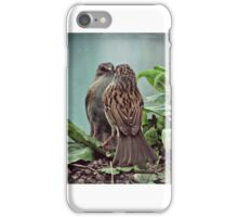 Who are you looking at? iPhone Case/Skin
