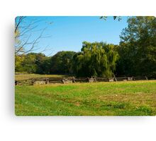 Willow Tree Landscape Canvas Print