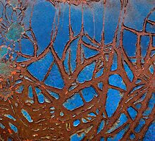 Tangled Webs by Barbara Ingersoll