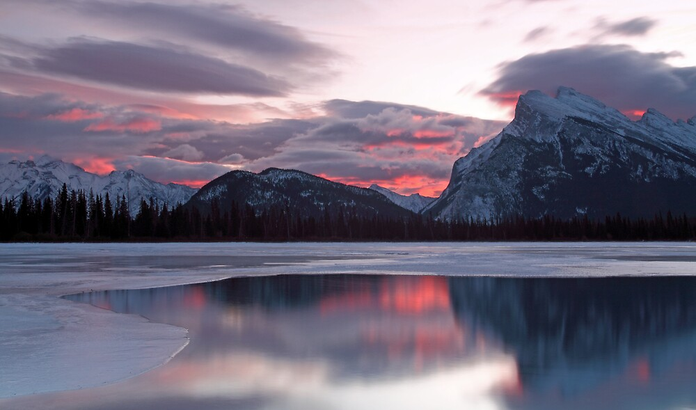 Fire and Ice by Michael Collier