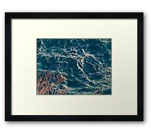 Branches at the edge of the lake Framed Print