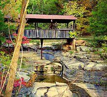 One Lane Covered Bridge at Ponca, Arkansas by David  Hughes
