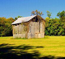 Old Hay Barn in Boxley Valley near Ponca,Arkansas by David  Hughes