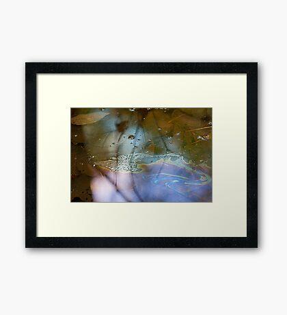 Pretty Slick! Framed Print