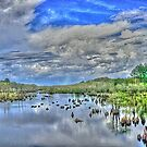 Dead Lakes HDR by WTBird