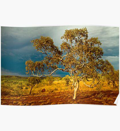 Approaching Thunderstorm at Karijini National Park, WA Poster