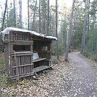 Walking trail Cabin by Brady Flageole