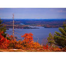 Valley of the Trees Photographic Print