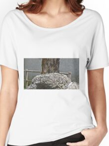 Colored bird on a rock in the countryside Women's Relaxed Fit T-Shirt