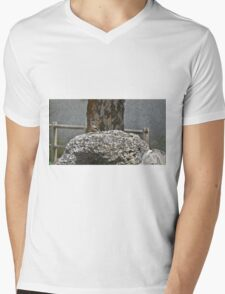 Colored bird on a rock in the countryside Mens V-Neck T-Shirt