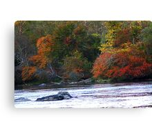 Eastern Shore French Broad River Autumn Canvas Print