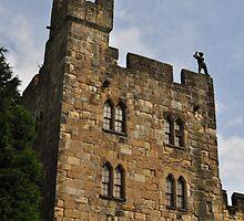 Alnwick castle entrance by Wabacreek Photography