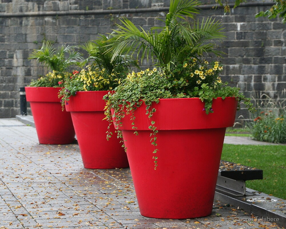 """""""Three Red Flower Pots in Old Quebec City"""" by Laurel"""
