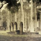 Graves, Ghosts & Gums by Boadicea