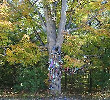 Shoe Tree by Lynn  Gibbons