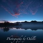 Scenic South Island, NZ by Odille Esmonde-Morgan