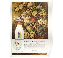 Advertisements Photoplay Magazine July through December 1920 0805 San Tox Poster