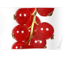 A macro photography of red currants. Poster