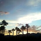 Desert Palmtree Silhouette Sunset by djackson