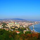 capital.Budapest_Panorama.from.Gellert.Hill_2010.Oct  by ambrusz