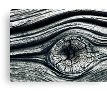 11.10.2010: Eye of the Old Wall Canvas Print