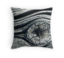 11.10.2010: Eye of the Old Wall Throw Pillow