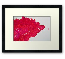 A section trough cells on the tip of a tongue. Framed Print