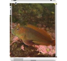 Welcome to my underwater place iPad Case/Skin