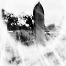 Lens flare by Terri-Anne Kingsley