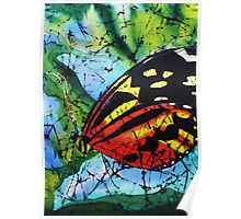 Butterfly on silk Poster