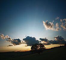 Summertime blues by AndreeaGogu