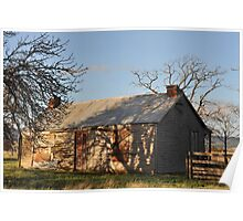 Late afternoon winter sun Poster