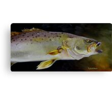 Speckled Trout Study Canvas Print