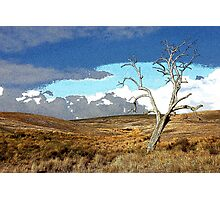 Distorted Reality Landscape Photographic Print