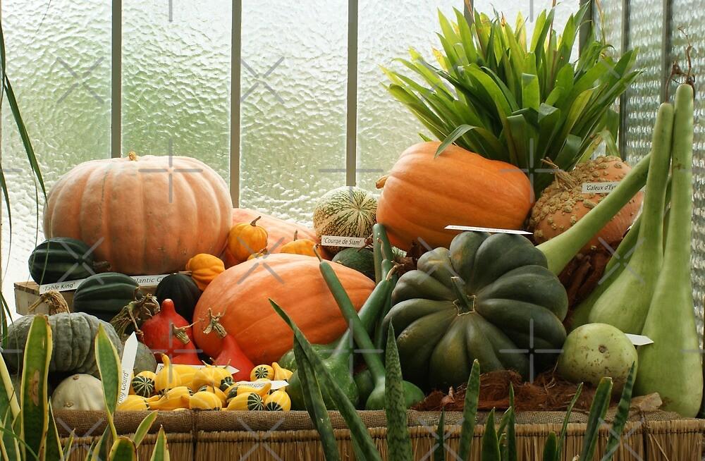 autumn harvest 2 by poupoune