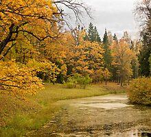 Russian autumn. Pavlovskiy Park by Stratoboy