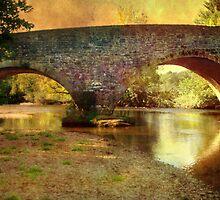 Exe Bridge by Catherine Hamilton-Veal  ©