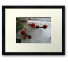 Holly berries and that special Christmas light Framed Print