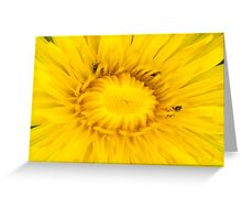 Dandelion Hunt Greeting Card